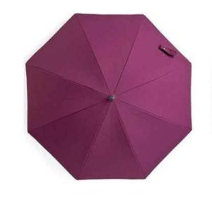 dsland_zont_purple